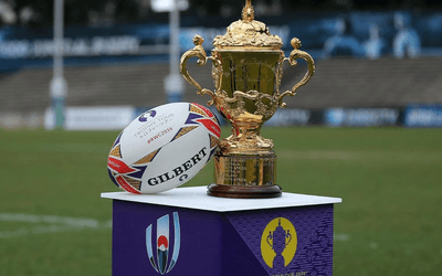 Rugby World Cup 2019 Sweepstake
